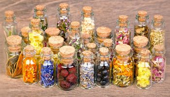 The Incredible Perks of Holistic Medicine